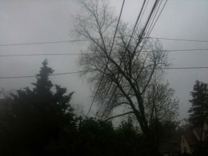 Hurricane Sandy Springfield Photo Essay 5:17 p.m. Oct. 29, 2012